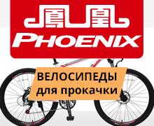 Банер PHOENIX